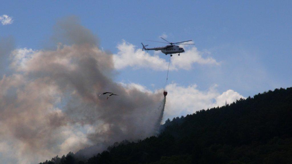 İstanbul Maltepe'deki Orman Yangını Kontrol Altına Alındı