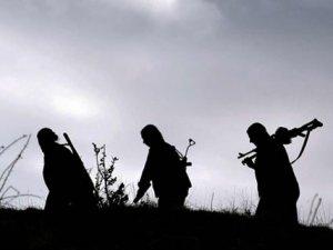 ABD'den PKK'ya eğitim