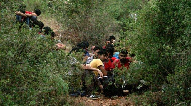 Fethiye'de 54 göçmen yakalandı