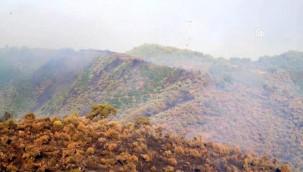Milas'ta orman yangını çıktı! Karadan Ve Havadan destek Var
