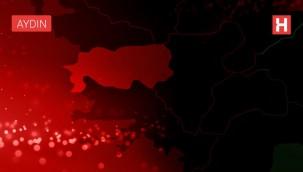 Aydın'da Korkutan Yangın! Ev Kül Oldu