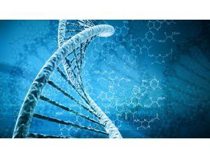 Türkiye'nin Gen Yapısını Araştıracak Merkez